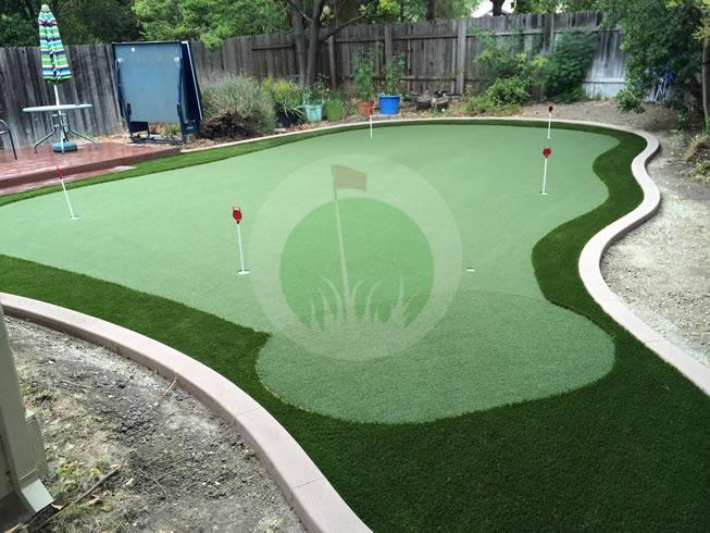 Sacramento 650 sq ft green